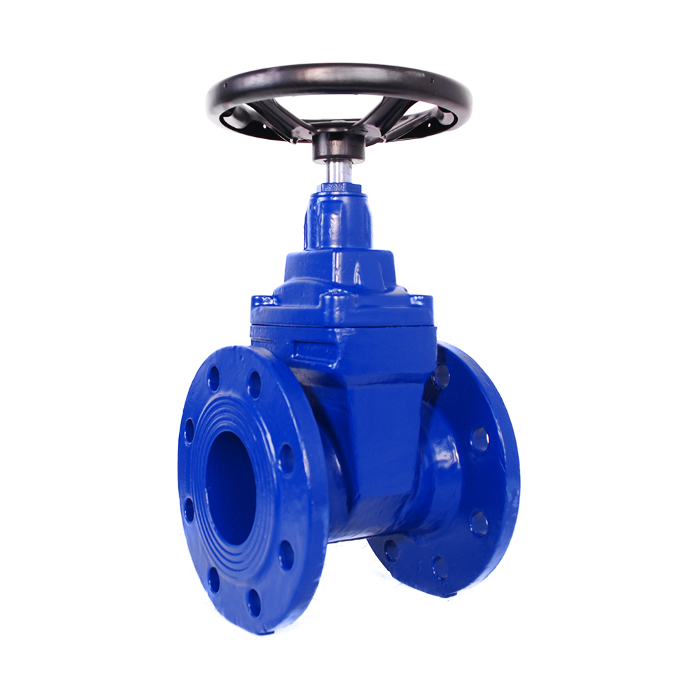 WITH ELASTOMER GATE VALVE