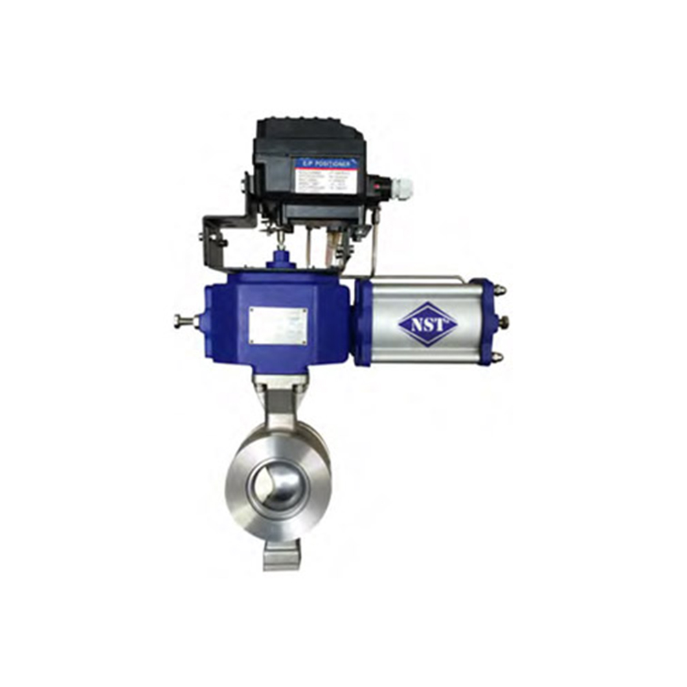 WAFER SEGMENT BALL VALVE